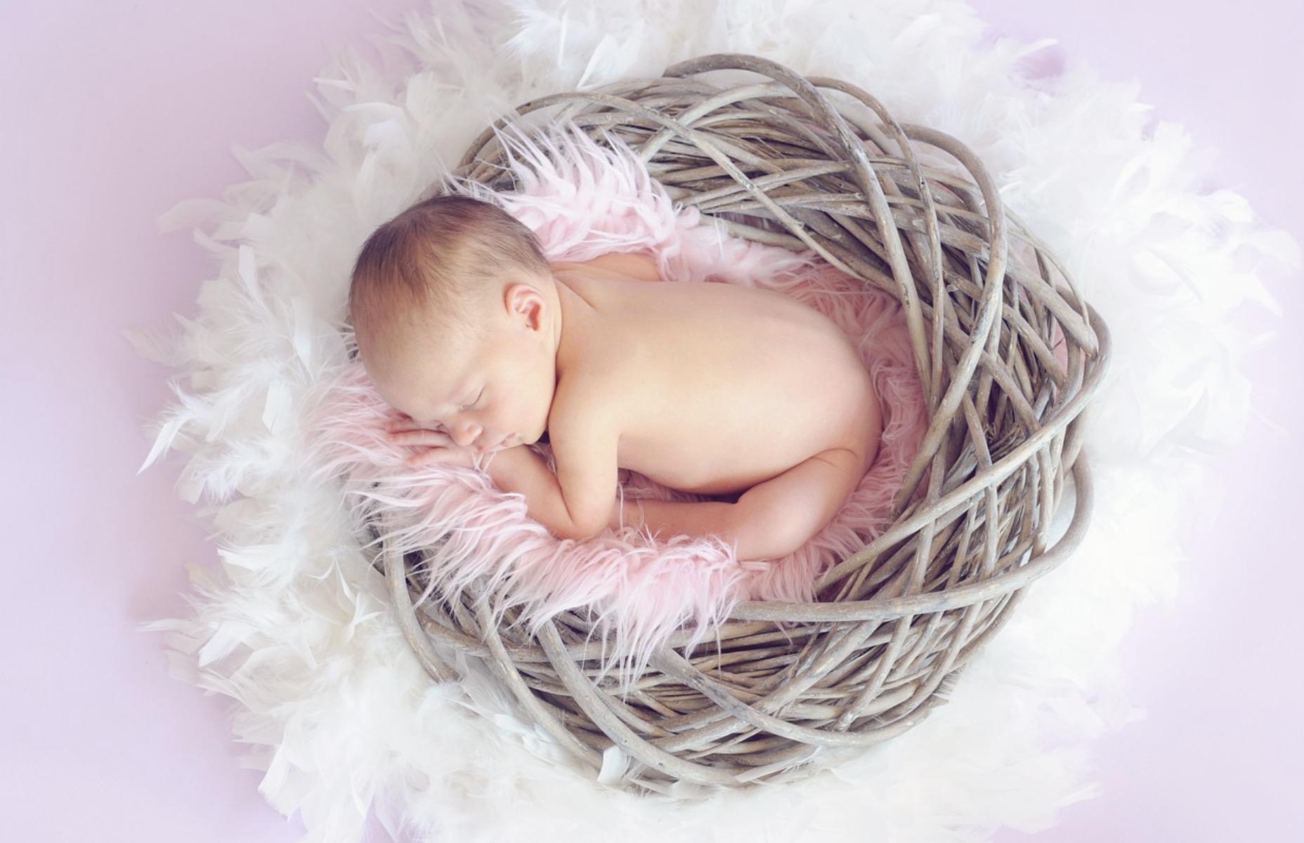 Le bébé et la puériculture