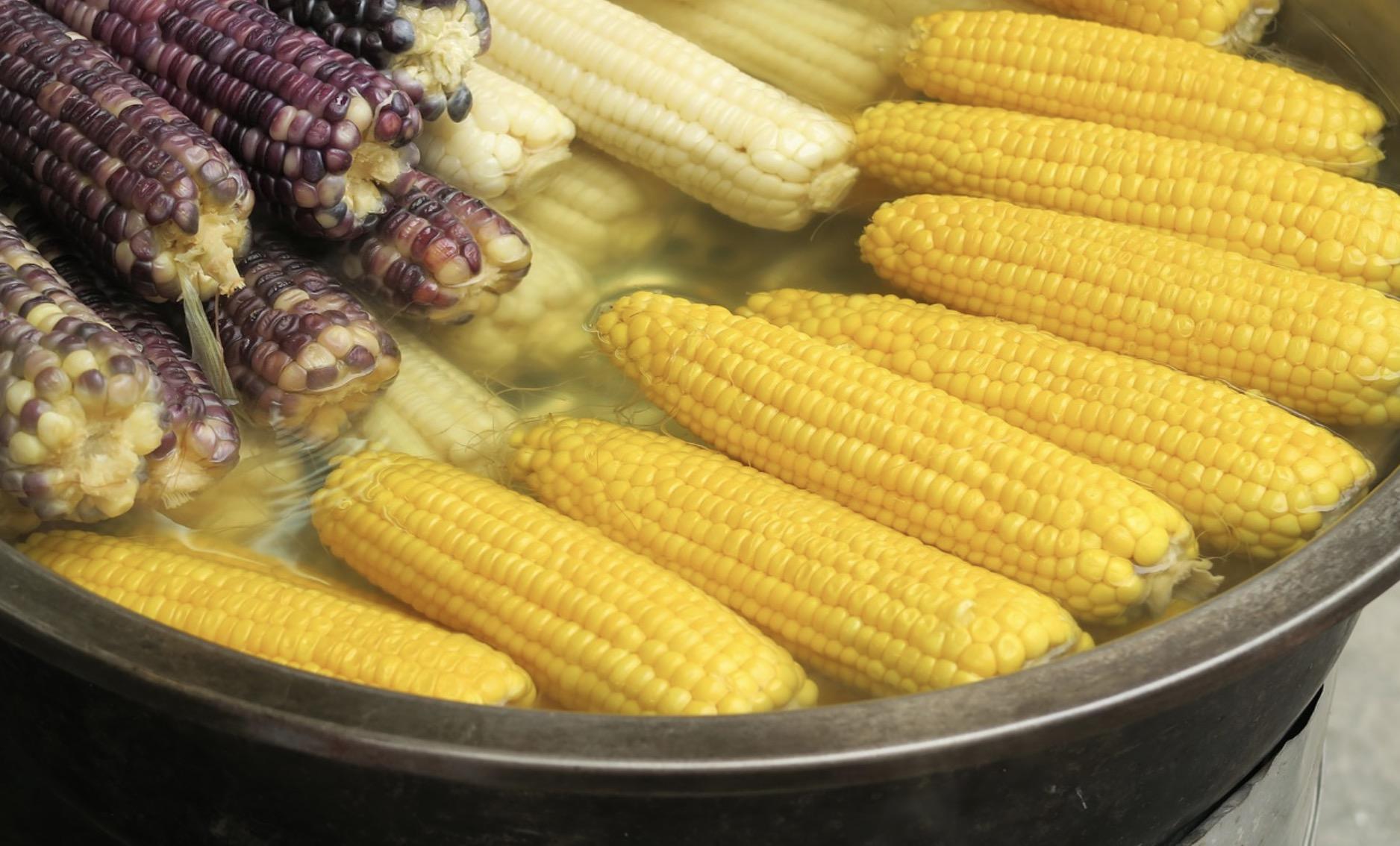 Les épis de maïs pour ne pas grossir le soir
